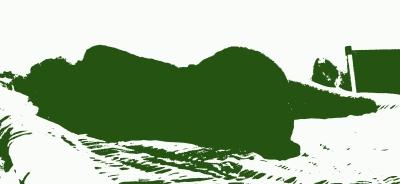 schiena-verde